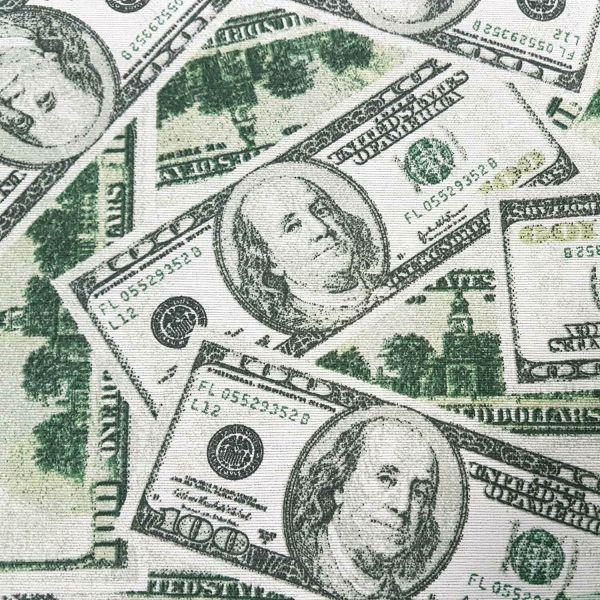 Stoff Meterware Baumwolle pflegeleicht Dollar Geldschein Bucks Banknoten Geld