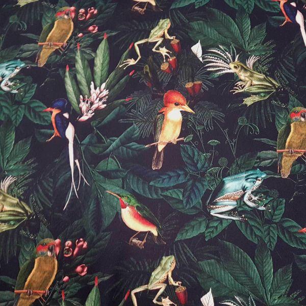 "Stoff Baumwolle ""Dschungel"" Frosch Vögel bunt dunkelblau Dekostoff Digitaldruck 0,5"