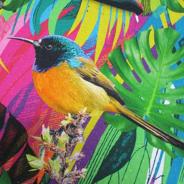 Stoff Baumwolle Digitaldruck Dschungel Tukan Orchidee exotisch bunt