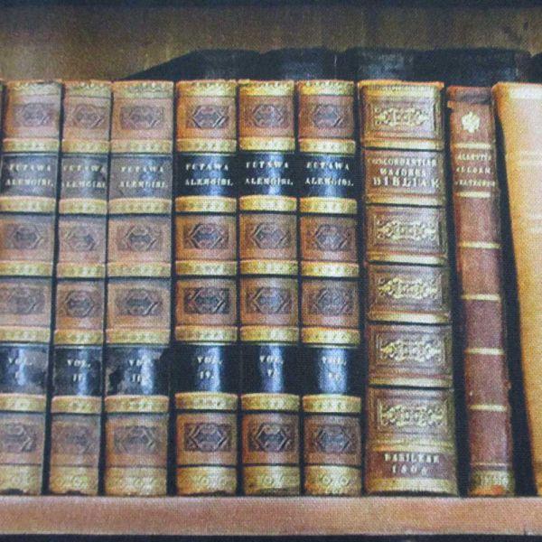 Stoff Baumwolle Bücher Bibliothek Bücherregal Digitaldruck