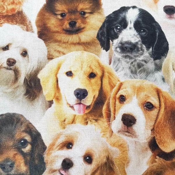 Stoff Meterware Baumwolle Hunde Hund Welpen Retriever Russel Pudel Fotodruck