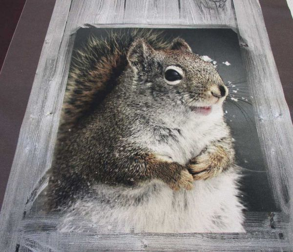 """Stoff Baumwolle """"Forest"""" Waldtiere Eichhörnchen Bär Reh Kissen Handtuch"""