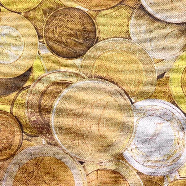 Stoff pflegeleicht Münzen Goldschatz Schatz Geldstücke 0,5