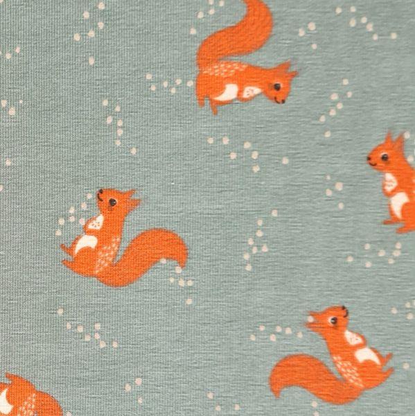 Stoff Meterware Jersey salbeigrün Eichhörnchen 0,5
